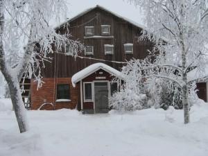 Ladugården i januari 2010