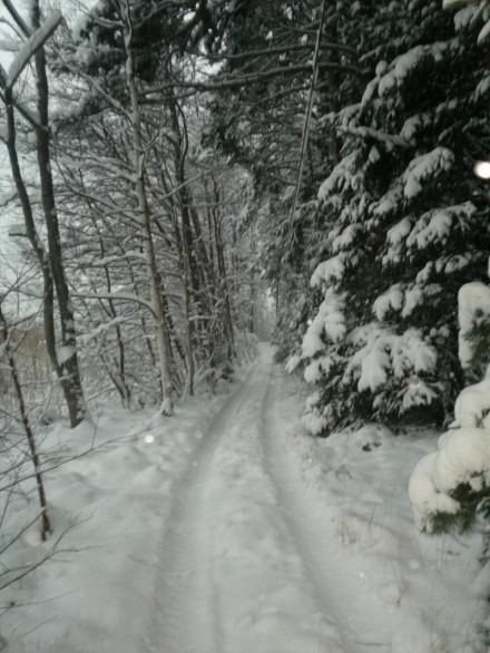 vägen till bilen i snö