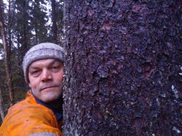 Då man numera ensam beträder skogens stigar sökes ibland tröst hos en gemensam stadig vän vars susning får förmedla mina tankar till skogens hjälte, min son Erik.