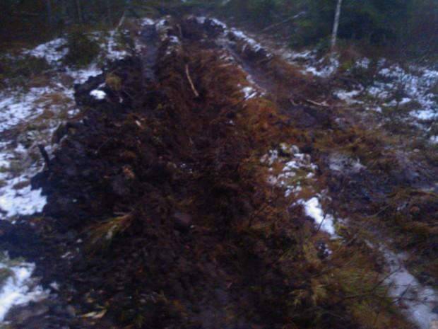 Trots att jag körde upp spår i snön för att underlätta tillfrysning under den kalla perioden bär det inte längre på de platser där risbädd saknas.