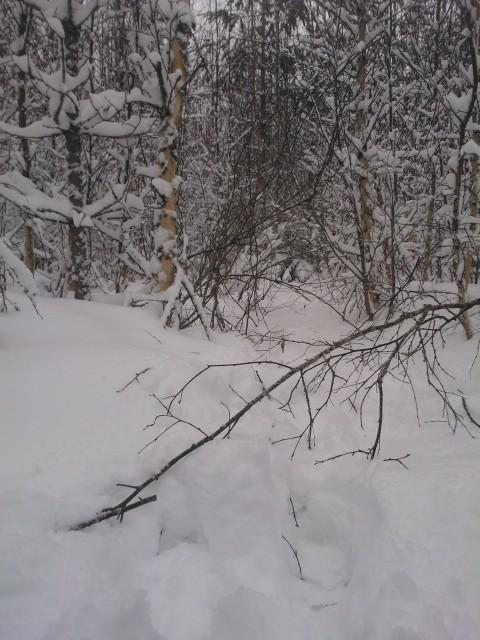 Här har jag tydligen gått förut.... vilse? Nää men inte så lätt att hitta en vitmålad käpp som är en meter hög!
