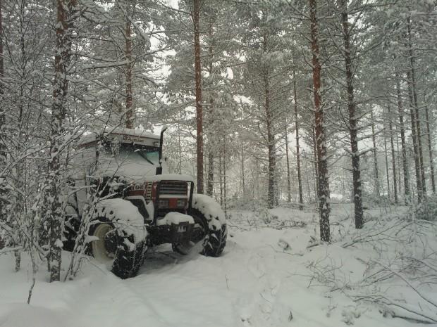 12.03.2013. Trotjänaren har snöat ner under natten men startar snällt i kylan.
