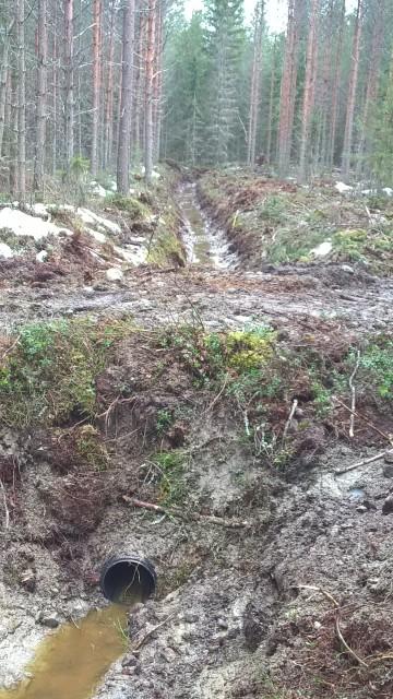 Dikestrumma för att underlätta korsande av diket i fortsättningen.