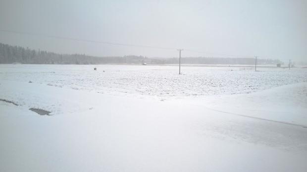"""19.4.2016. """"Takatalvin"""" slog till med snö och slask."""