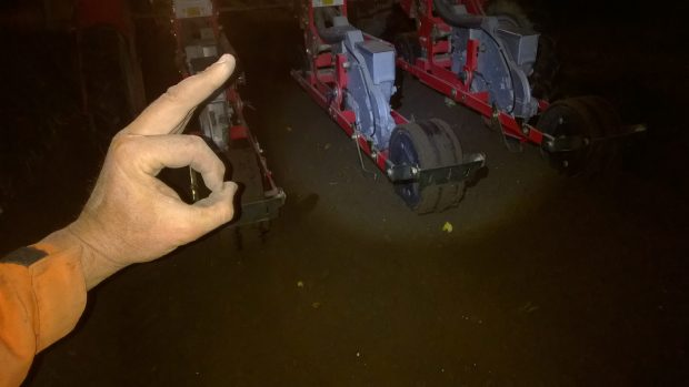 9.8.2016 Kl.2:47 Årets vårbruk avslutas med sådd av spenat i något för fuktig jord.