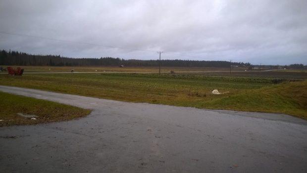 Utsikt över Långmossen 16.11.2016